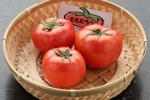 豊栄トマト